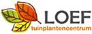Loef tuinplantencentrum sponsort Scouting Radboud